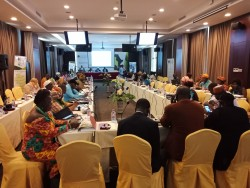 2 United Cities and Local Governments of Africa (UCLG Africa) Regional Strategic Meeting.jpg