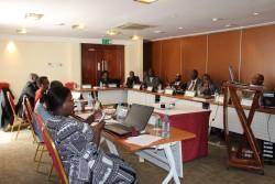 Photo d'illustration ULCG Africa Workshop.JPG